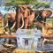 Dětský domeček - Tropický ráj 8